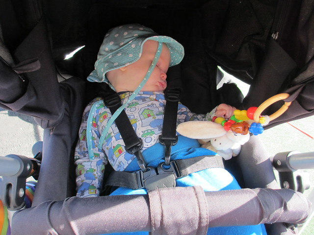 Sander sover i vagnen