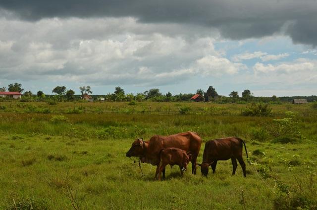 Chebilang village