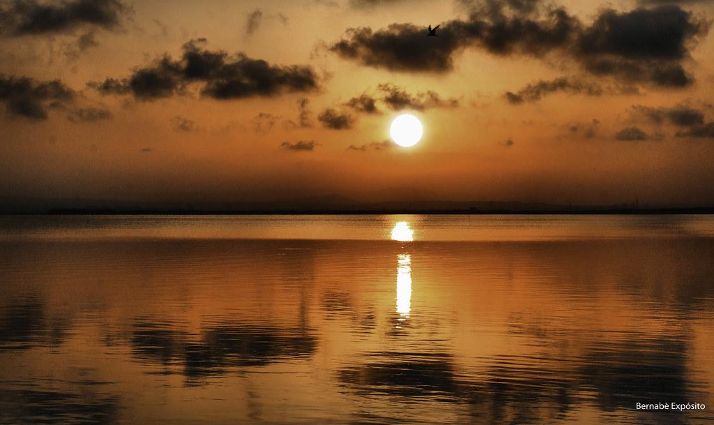 Foto gratis de una puesta de sol en la Albufera de Valencia