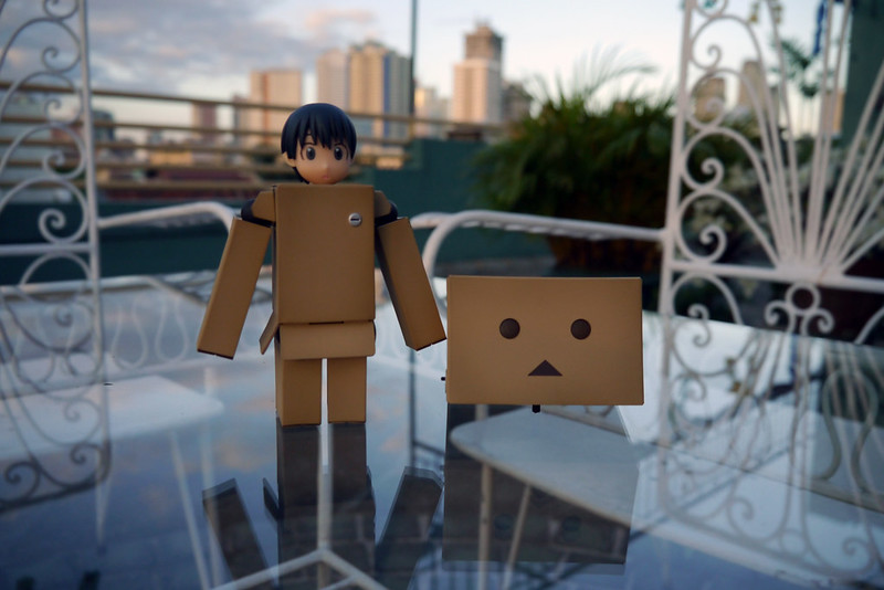 Revoltech Danboard Renewal Package 005