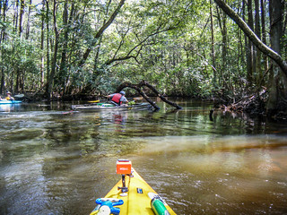 South Edisto River-053