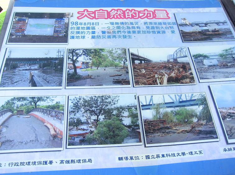 大樹舊鐵橋生態公園 (47)