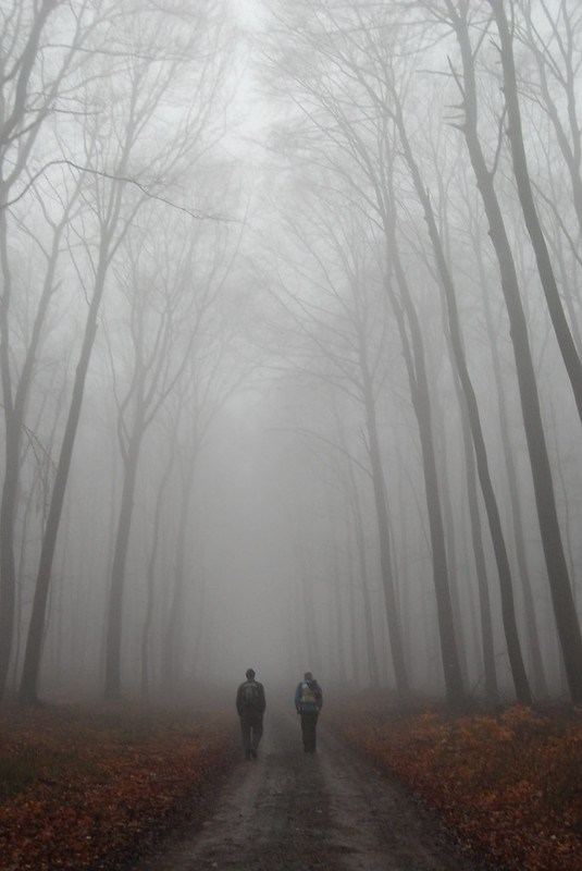 foggy hike 2