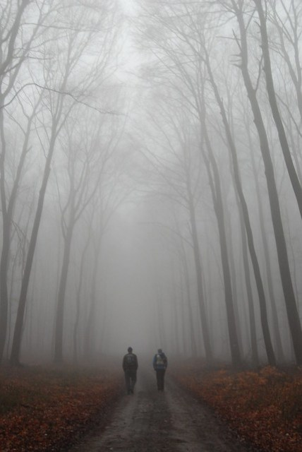 2-foggy hike
