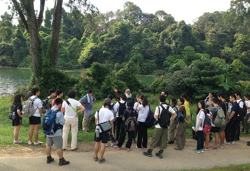 Love MacRitchie training