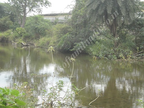 The Moat around the temple, Karkadeswarar temple, Thirundudevankudi