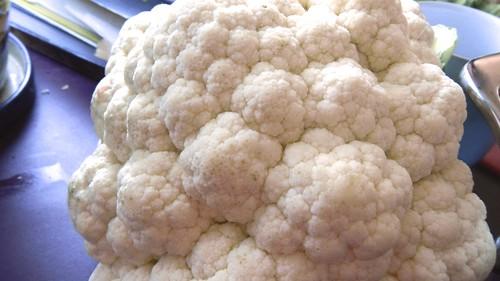Potato-Cauliflower Gratin 2
