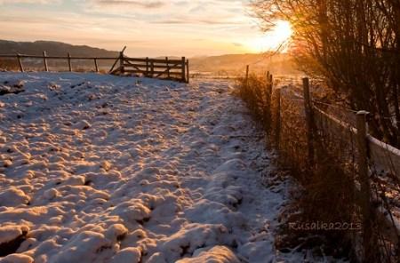 Sunny November (Explored Nov 22, 2013 # 2)