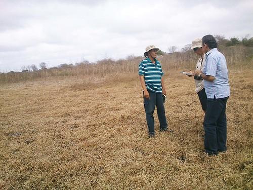 Coversando con Pepe y Alfredo, dos expertos en temas de desarrollo rural y tierras comuanales