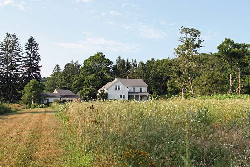 bauer farm-erin boyle for gardenista