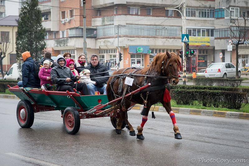 pastele cailor Targoviste  8 martie 2014