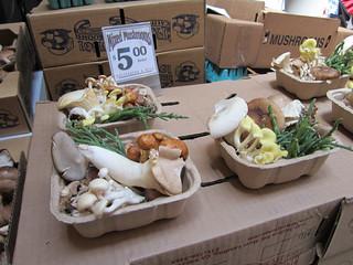 mushrooms at ferry plaza market
