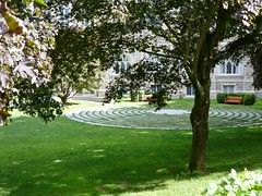 Labyrinth through trees