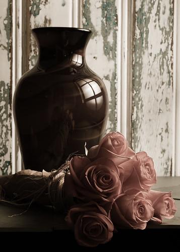 The Window by Luiz L.