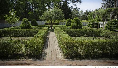 02 - hedge garden