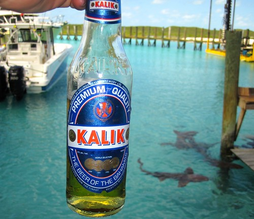 Kalik goes well with sharks