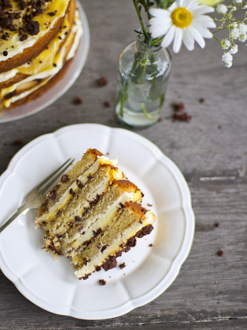 chocolate chip passionfruit naked cake