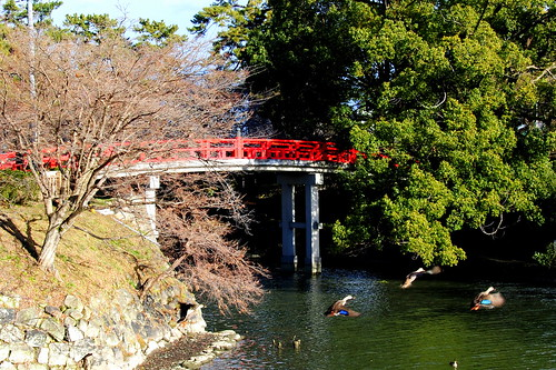 Okazaki Castle 054r