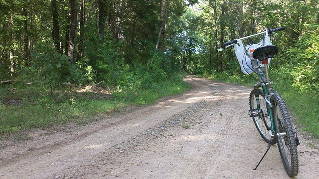 cycling a woodland road