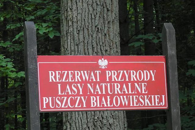 Bialowieskie Nationalpark Polen
