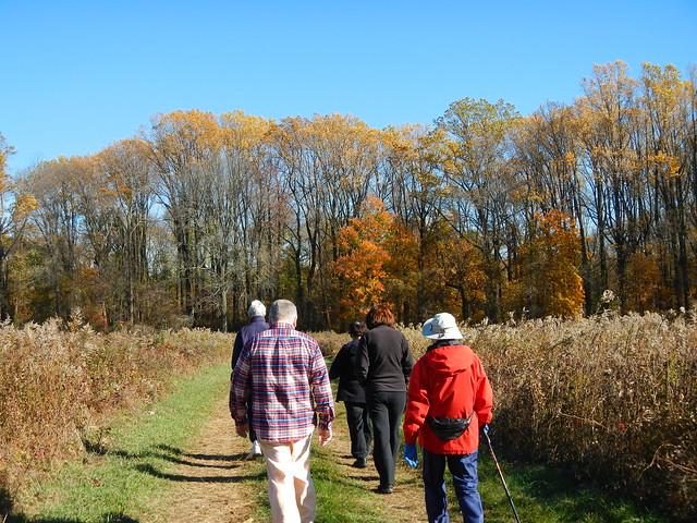 November 2013 Trail Ramble