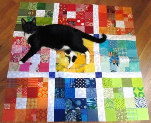 Jett Approved Charity Quilt Top
