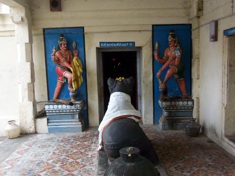 Outside Mangalyeswarar sannidhi, Edayathumangalam