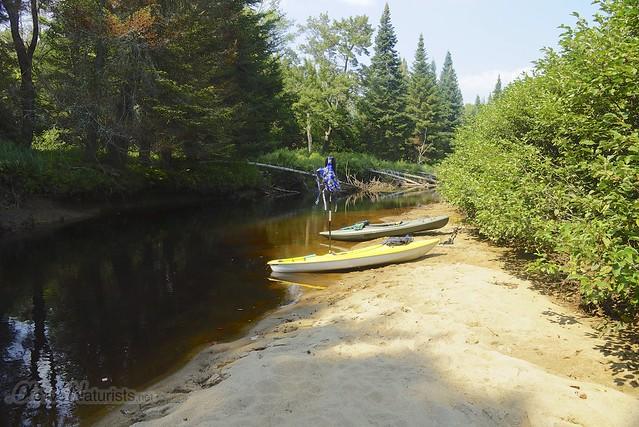 view 0002 Sacandaga River, Adirondack, NY, USA