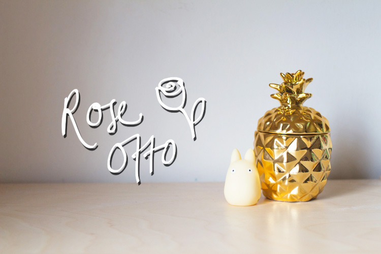 pineapple totoro rose otto