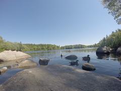 Fleming Park - Frog Pond Trail