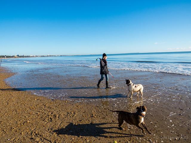 Me and the dogs on Sandbanks Beach