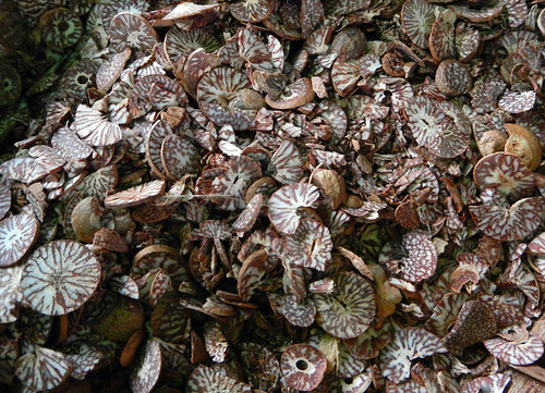 Areca Nuts in the Mandalay Market