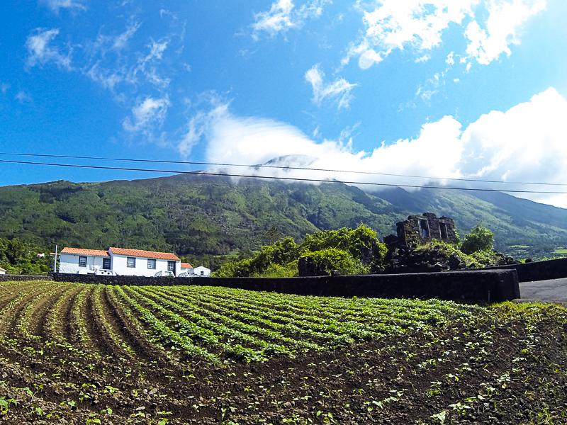A nossa casa, São Caetano, ilha do Pico
