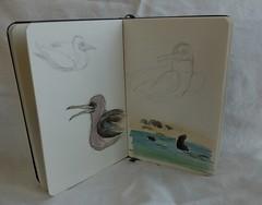 finishing notebooks09
