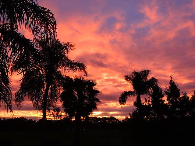 Sunrise New Year's Eve morning,
