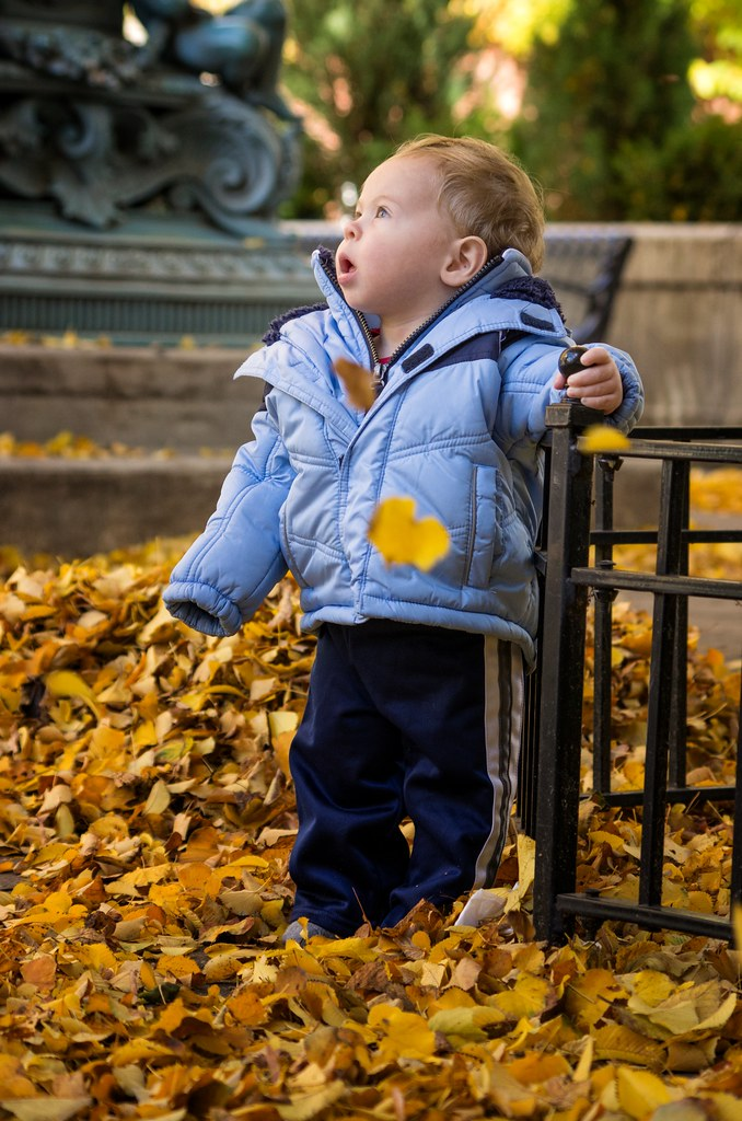 Micah and the Fall Leaves