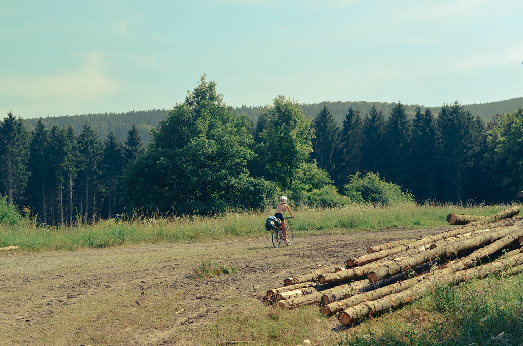 3 cycling through the german forest