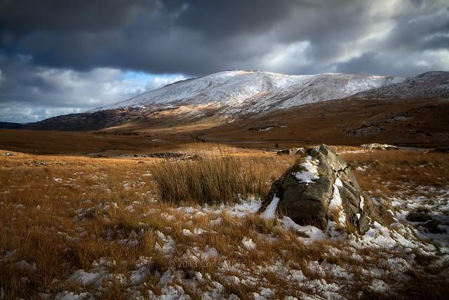 In Winters Coat