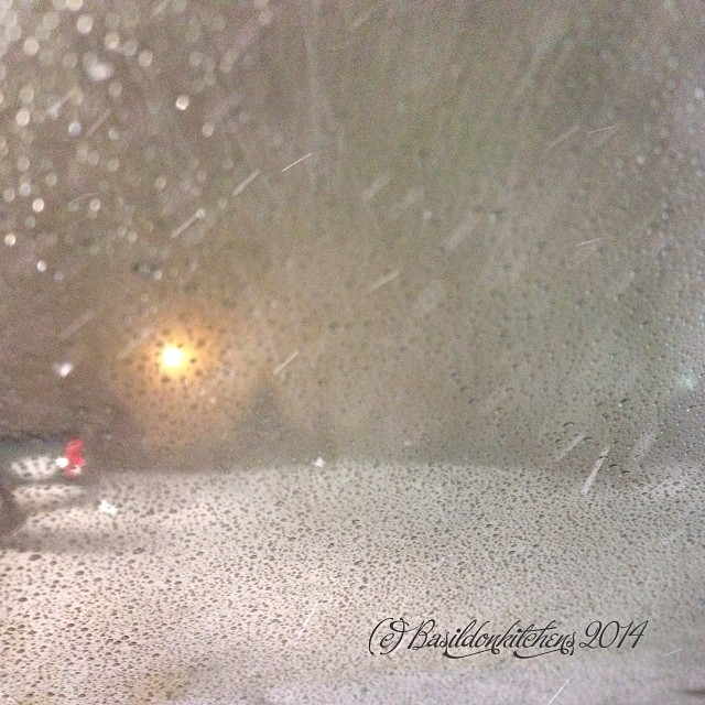 9/1/2014 - daring {the most daring thing I've done lately, was driving home through this earlier this week. The usual 40 minute trip took over 2 hours. I wanted to kiss the ground when I arrived safely} #photoaday #winter #weather #snow #princeedwardcount