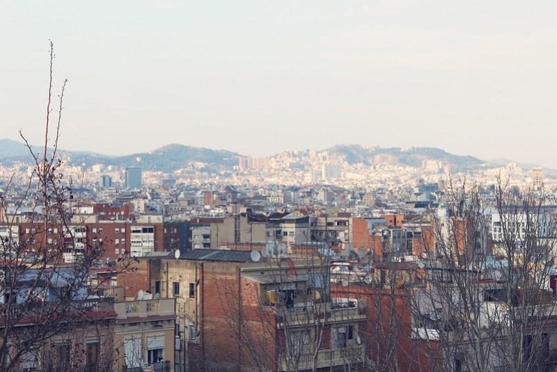 barcelonasnapshot21