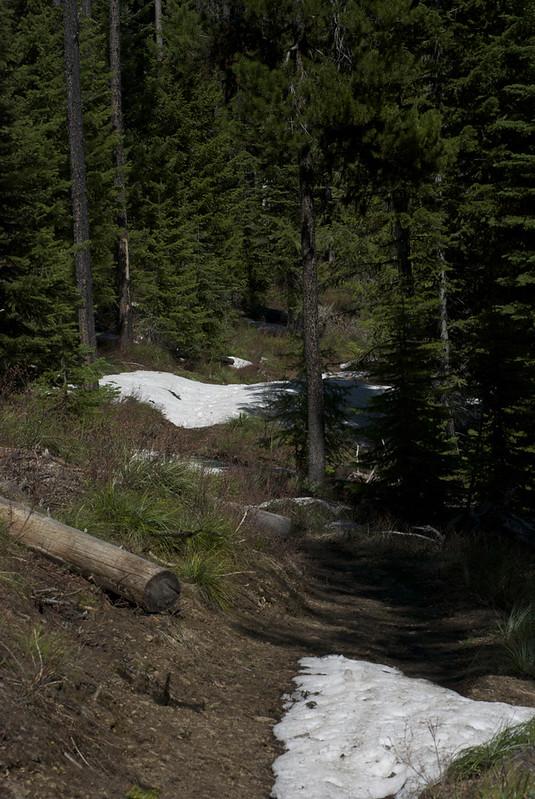 Big Hole LO trail