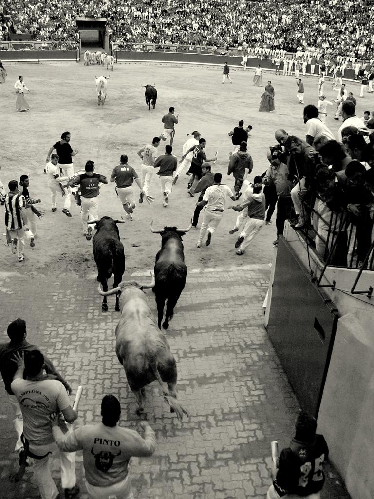 Entrada de un encierro en la plaza. Autor, Baltasar García
