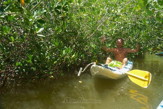 naturist 0000 mangroves, Progreso, Yucatan, Mexico