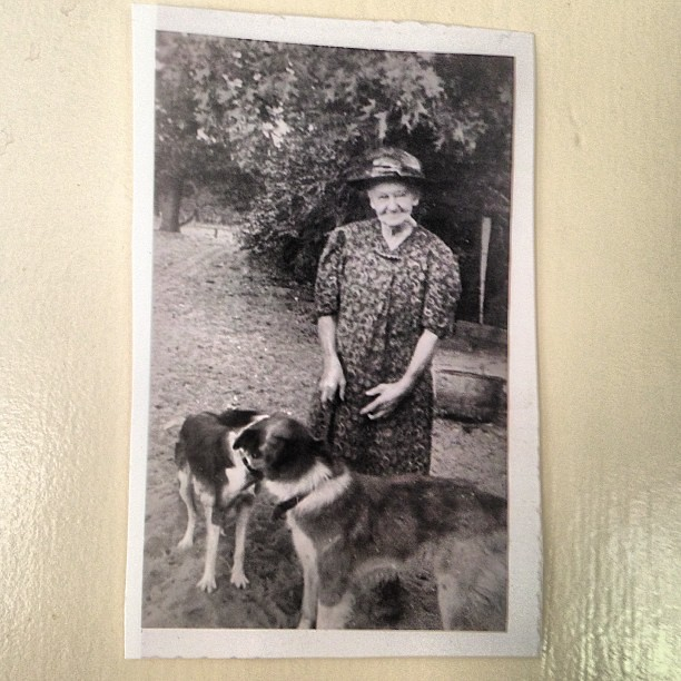 My great-great-grandmother Adrianna and her dogs. #dogcrazy #runsinthefamily