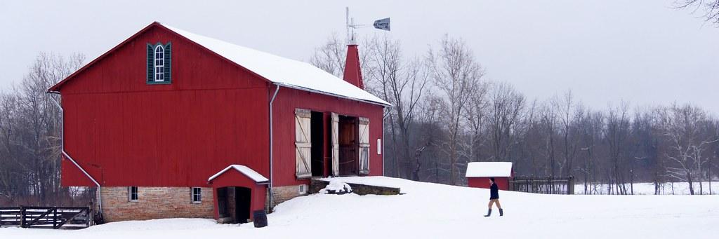 Winter Barnyard 1