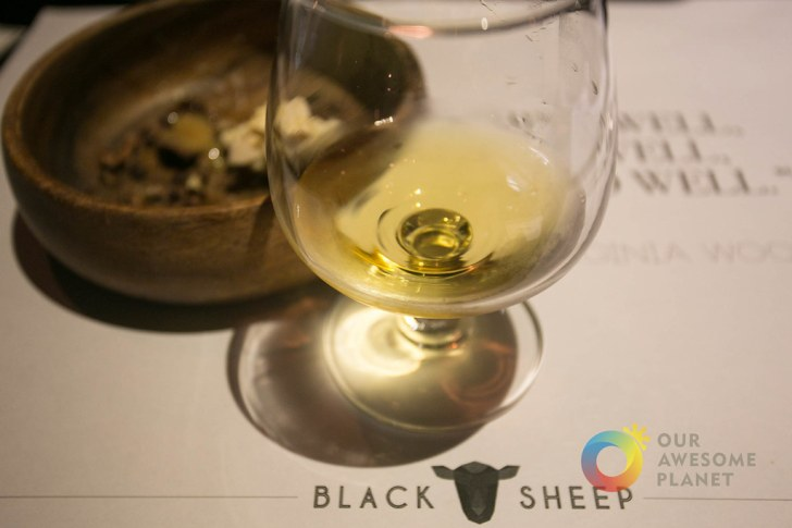 BLACK SHEEP - BGC - Our Awesome Planet-74.jpg