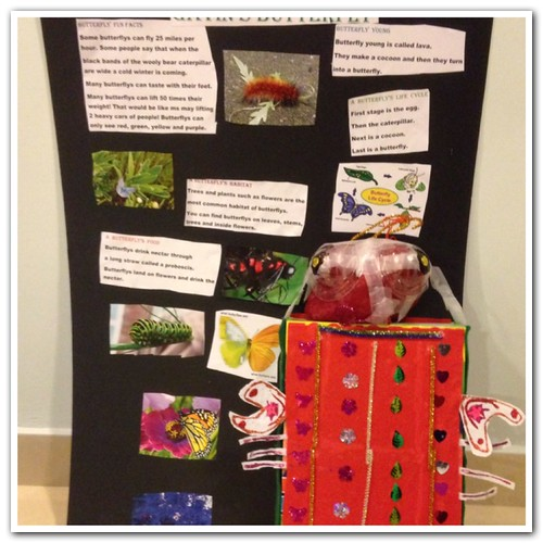G1's insect project