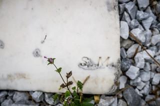 Lebanon Baptist Church Cemetery-009
