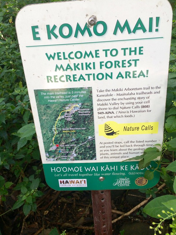 Picture from the Makiki Valley Trail