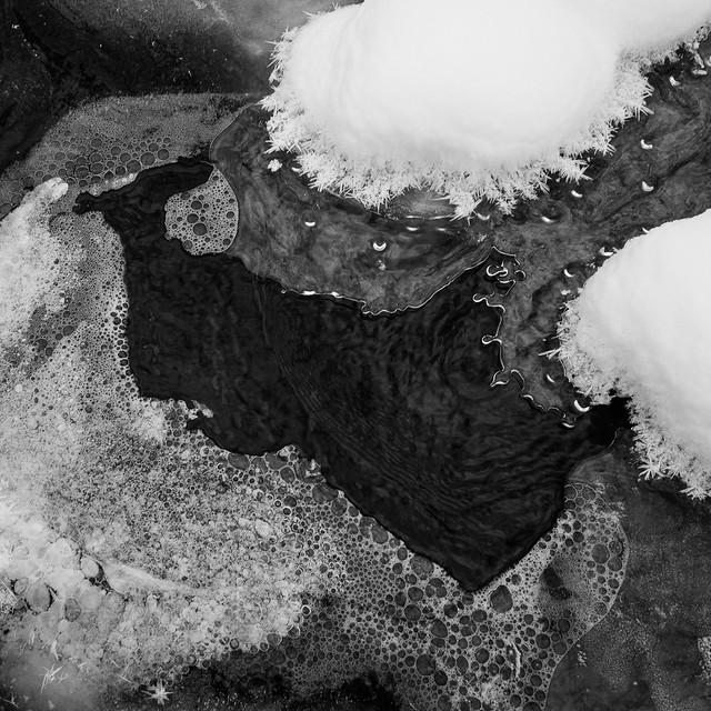 Pine Swamp snow, ice, bubbles